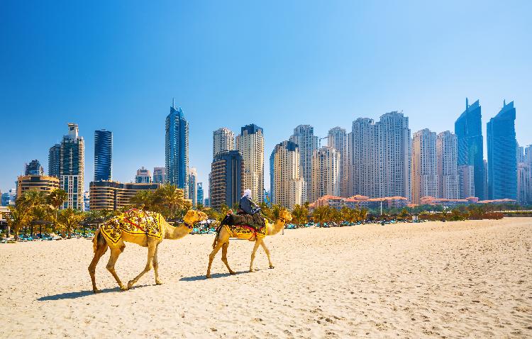 ドバイで英語学ぶ語学学校「ES Dubai」